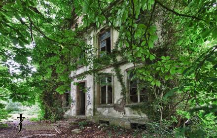 Steenfabriek en Villa Rees
